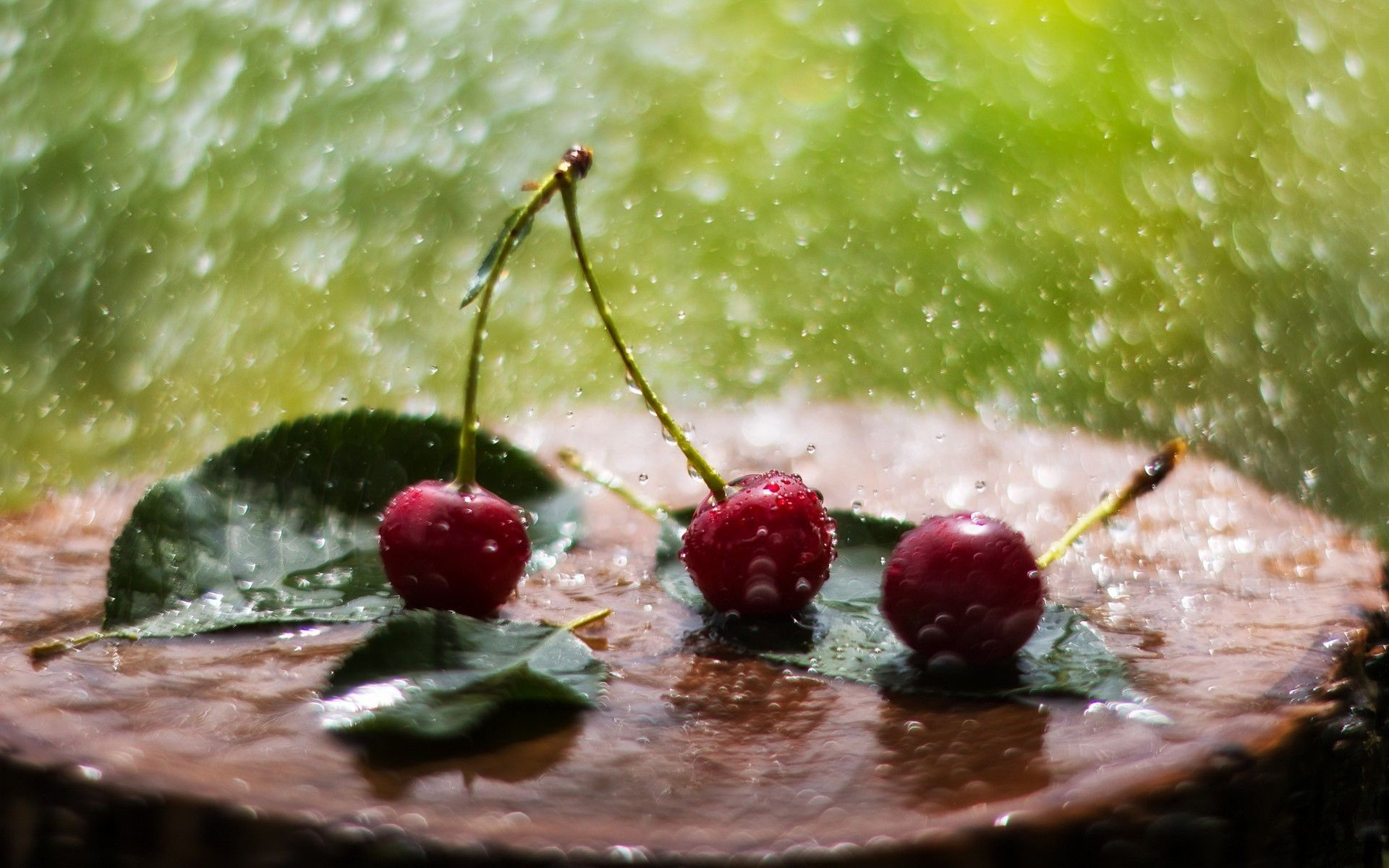 дома картинки на телефон лето дождь французских окон лучше