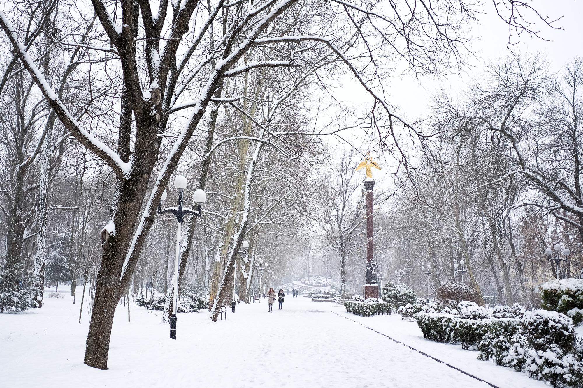 Позы для зимней фотосессии на улице фото голосует наступление